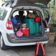 Two green suitcases and many bags in car — Stock Photo #29050583