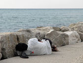 Illegal immigrant just landed in the harbor while sleeping on qu — Stock Photo