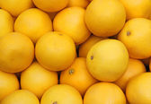 Ripe grapefruit yellow sale at vegetable market — Stock Photo