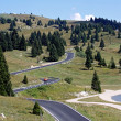 Stock Photo: Ong and winding road full of bends in meadows