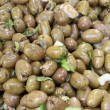 Stock Photo: Siciliolives in spicy vegetable market sales