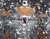 Fotograf z tysiąc lustra podczas samowyzwalacza — Zdjęcie stockowe