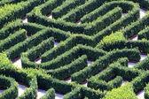 Labirinto feito com coberturas em um jardim de uma vivenda — Fotografia Stock