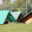 Tents for sleeping installed on a campsite — Stock Photo
