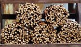 Dried Licorice sticks originals from calabria — Stock Photo