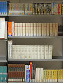 Books on loan in a big Italian municipal library 2 — Stock Photo