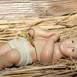 Stock Photo: Baby Jesus is laid in cradle in manger