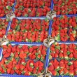 Boxes full of juicy red strawberries and sold at local market — Stock Photo