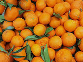 Juicy tangerines for sale at vegetable market — Stock Photo