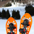 Stock Photo: Two snowshoes for walking on soft snow