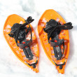 Stock Photo: Orange snowshoes for walking on soft snow