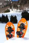 Two snowshoes for walking on the soft snow — 图库照片