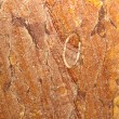 ������, ������: Orange marble with veins of red color sanded ready for use
