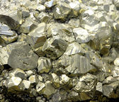 Rock with mineral PYRITE crystals or gold just found by Geologis — Stock Photo