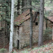 House abandoned in forest — Stock Photo