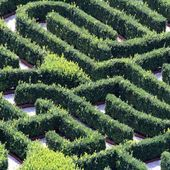 Huge green maze made with hedges in a garden of a villa — 图库照片