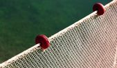 Net intact without fish but — Stock Photo