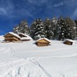 Chalets and mountain houses in the middle of the snow high in th — Stock Photo #48839541