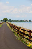 Cycling track alongside the sea near the town of GRADO Italy — Stock Photo