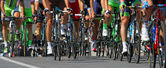 Cyclists ride  during the international race — Foto de Stock