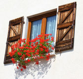 Balcony with large pots of Geraniums blooming 2 — Stock Photo