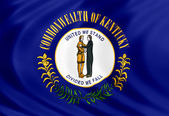 Kentucky flag of silk — ストック写真