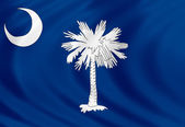 South Carolina flag of silk — Stock Photo