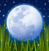 Full moon and grass meadow — Stock Vector