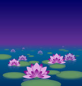 Lotus pond at night — Stock Vector