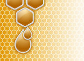 Honeycomb background — Vecteur