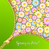 Spring zipper with flowers — Stock Vector