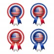 American rosettes — Stock Vector #47652975