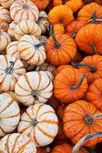 Halloween dekoration — Stockfoto