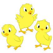 Cartoon Chickens — Stock Vector