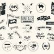 Collection of vintage retro labels, badges, stamps, ribbons, marks and typographic design elements, vector illustration — Stock Vector #43061179
