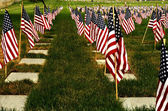 Honor Our Veterans — Photo