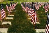 Honrar a nuestros veteranos — Foto de Stock