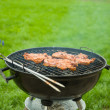 Grilled meat on charcoal grill in green grass — Stock Photo #26634159