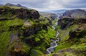 Thorsmork bergen canyon och floden, nära skogar, island — Stockfoto