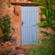 Royalty-Free Stock Photo: Colorful door and wall with flowers