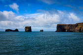 Dyrholeay ocean cliffs, Iceland — Stock Photo