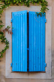 Blue closed window with green plants — Stock Photo