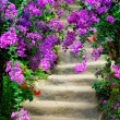 Stock Photo: Beautiful colorful blossom flowers and garden stairway