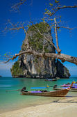 Phra Nang beach and island landscape view with tree and boat — Stock Photo