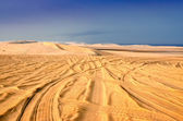 Tyre tracks in the sand desert — Stock Photo