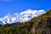 Himalaya bergstopp visa annapurna ii — Stockfoto