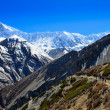 Group of mountain trekkers backpacking in Himalayas landscape — Stock Photo