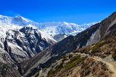 Groep van berg wandelaars backpacken in himalaya landschap — Stockfoto