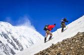 Dwóch wędrowców górskich na śniegu z szczyty tło — Zdjęcie stockowe