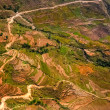Stock Photo: Aerial view of colorful field terraces and the road